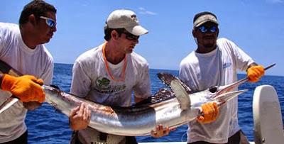 20140617002401-pesca-marina.jpg